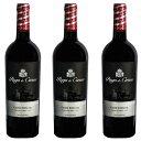 パゴ・デ・サルサス キュヴェ・エスペシャル (2015) 3本セット スペイン 赤 ワイン 辛口