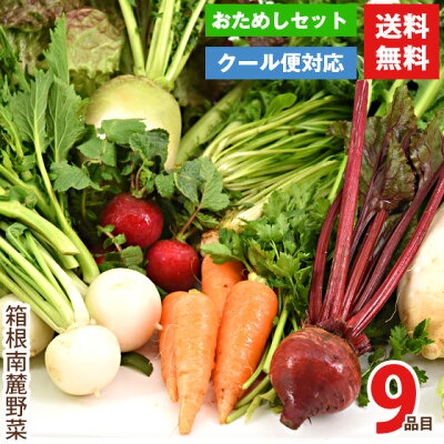 伊豆メディカル農園 おためし野菜セット 9種類:2,380円