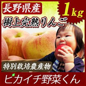 農薬・化学肥料をほとんど使用しない特別栽培国産リンゴなので安心安全!にんじんジュースに最...