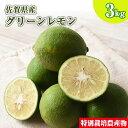 訳あり 佐賀県産 特別栽培 レモン 3kg 国産 マイヤー リスボン クエン酸 ビタミンC 柑橘 人参ジュース
