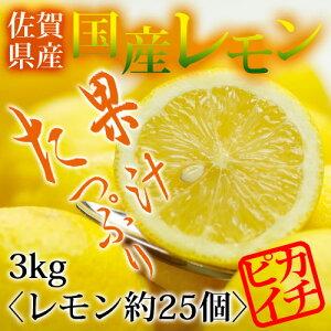 【特別栽培農産物】【佐賀県産】国産レモン3kg