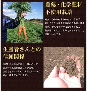 農薬・化学肥料不使用栽培