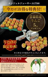 青森県産りんごプレゼント