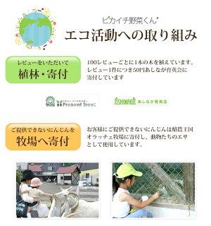 エコ活動の取り組み(レビューで植林・寄付、牧場へ寄付)