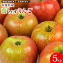 青森県産 葉とらずりんご 5kg箱 ピカイチ野菜くん リンゴ...