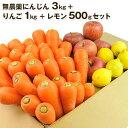 送料無料 無農薬にんじん野菜セット(無農薬にんじん3kg+りんご1kg+レモン500g) に……
