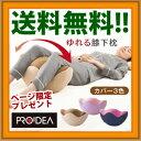 \ページ限定・カードケース付/ 【PROIDEA プロイデア...