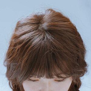 前髪ウィック)ラウンドバングテール(モースト原糸/レックス原糸)