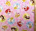 巾着袋(材料セット)・ディズニープリンセス(ピンク)#57【体操服入れ・給食袋・お弁当袋・コップ袋が各1個(合計4個)作れます】【クロネコDM便OK】
