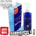 【店内P10倍/半額セール】洗車 イオン コーティング剤 PANDOR...