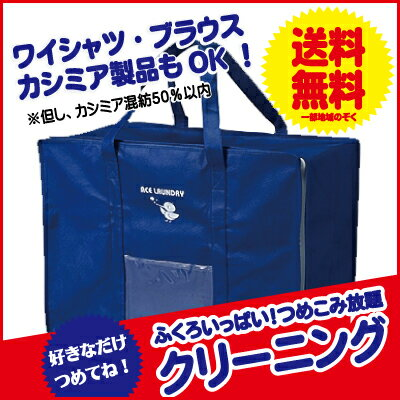 袋いっぱい!おまとめクリーニング送料無料