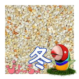 ぴよっちゅ カエデ鳥/文鳥冬用ブレンド 2.5kg×2 : 鳥の餌 えさ
