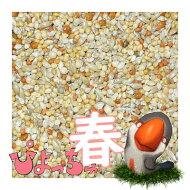 ぴちょっちゅカエデ文鳥春用1kg
