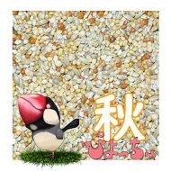 ぴちょっちゅカエデ文鳥秋用1kg×5