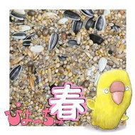 ぴちょっちゅラブマメ中型インコ春用1kg