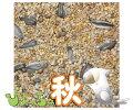 ぴちょっちゅオカメ秋用1kg×5