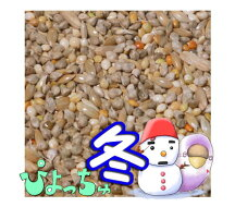 ぴちょっちゅセキセイ冬用1kg×5