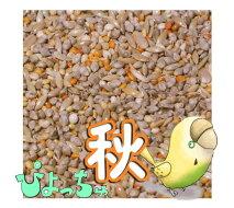 ぴちょっちゅセキセイ秋用1kg×5