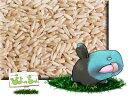 ムキオーツ (ムキ えん麦 ) 5kg×2 : 鳥の餌 えさ