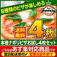 ピザ セット【送料無料】【あす楽】 【冷凍ピザ】新しくなった『石窯で焼いたナポリピザ大満足お試し4枚セット』信州産薪木で焼くナポリピザを冷凍ピザで☆イタリアンと和風の2種類から選ぶお試しピザセット。[pizza set 送料込み 冷凍 ピッツァ]