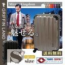 ミラーKingdom S(19)サイズ DL2100 グリフィンランド(GRIFFIN LAND) 小型 スーツケース 機内持込可能