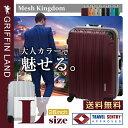 メッシュKingdom L(26)サイズ DL2100-1 グリフィンランド(GRIFFIN LAND) 大型 スーツケース 長期滞在