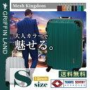 メッシュKingdom S(19)サイズ DL2100-1 グリフィンランド(GRIFFIN LAND) 小型 スーツケース 機内持込可能