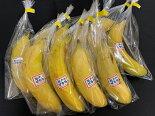【皮ごと食べられるバナナ】「瀬戸内ばなな」10本入
