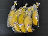 【皮ごと食べられるバナナ】「瀬戸内ばなな」8本入