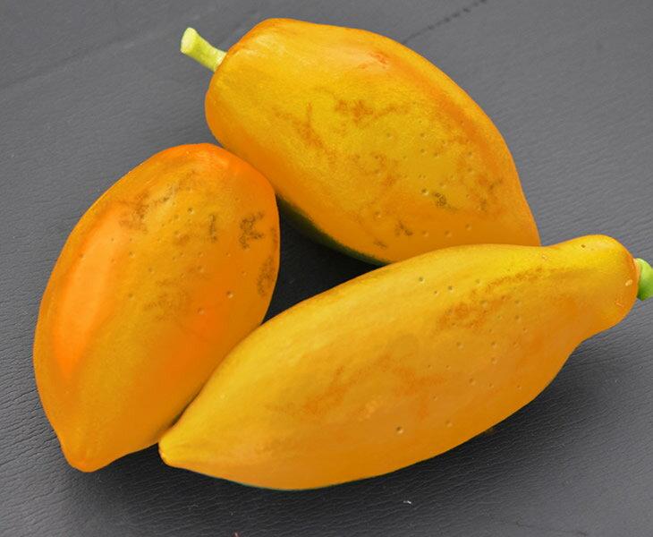 瀬戸内フルーツパパイヤ 2~3個