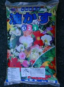 ★あらゆる植物の元肥、追肥に!【鉢植え】【花壇】【菜園】■油かす 5kg