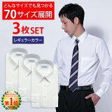【3枚セット】 ワイシャツ 長袖 形態安定 メンズ 白 イージーケア Yシャツ カッターシャツ ホワイト ドレスシャツ 大きいサイズ オフィス シャツ ビジネスシャツ 冠婚葬祭 制服 就活 レギュラーカラー CARPENTARIA [R12S3R101]