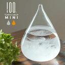 TEMPO DROP mini テンポ ドロップ ミニ 100% ヒャクパーセント ストームグラス φ80×110mm 硼珪酸ガラス