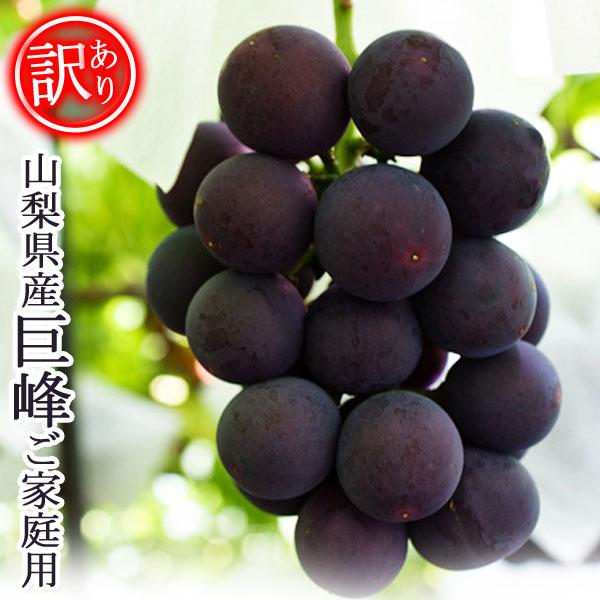【予約販売】山梨県産 巨峰 ご家庭用 訳あり きょほう ぶどう ブドウ 2kg 産地直送