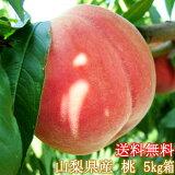 訳あり桃・桃の生産量日本一・山梨県産・わけあり・もも・不揃い・お買い得・大サービス・5Kg箱・家庭用・モモ