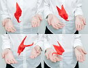PetiPetoTsuruRed【プッチペットツルレッド】眼鏡レンズクリーナー液晶画面クリーナーポケットサイズクリーナーPerrocalienteペロカリエンテインテリア雑貨ギフトプレゼント
