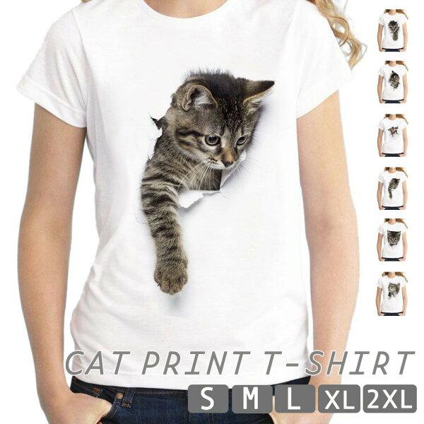 トップスレディースメンズTシャツティーシャツ半袖アニマル猫動物グラフィックキャットアートアメリカンショートヘア子猫不思議白地可愛