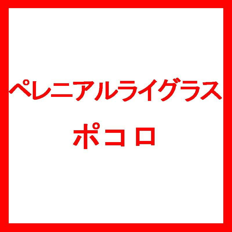 【種 10kg】 ペレニアルライグラス ポコロ 晩生 北海道用 酪農 畜産 [播種期:4〜9月] 雪印種苗 米3【代引不可】