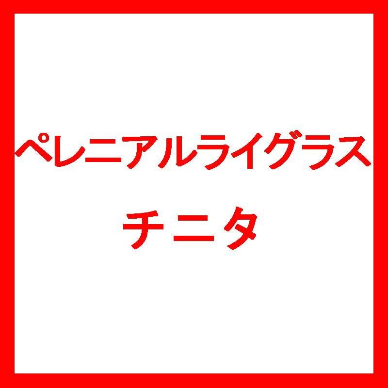 【種 10kg】 ペレニアルライグラス チニタ 中生 北海道用 酪農 畜産 [播種期:4〜9月] 雪印種苗 米3【代引不可】