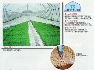 農業用光反射シートの種類と性能を解説【まとめ】 107