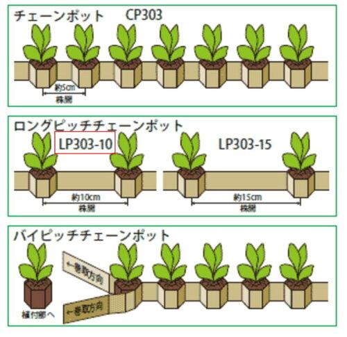 チェーンポット LP303-10 264鉢 (75冊入り) タ種