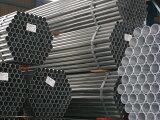 単管パイプ 2.5m 直径 48.6 ×厚2.4mm マルイチ製 鈴TDNZZ