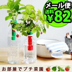 ペットボトル で簡単に育てられる 野菜 栽培キット ★栽培キット 野菜 かわいい ミニトマト バ...