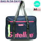 satelliteSchoolBAG705993