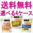 【送料無料】日清カップヌードル BIGビッグ48食セット(12食×選べる4ケース)※北海道は別途600円必要です。