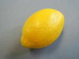 日本職人が作る 食品サンプル レモン IP 352