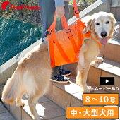 中・大型犬用オールケアハーネス6号