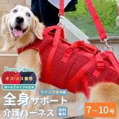 中・大型犬用オス・メス兼用メッシュ3WAYケアハーネス10号[ポンポリース]