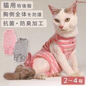 [ネコpom]猫用術後カバーオールネオボーダー【2・3号】