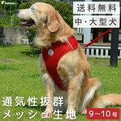 中大型犬用スーパーフィット胴輪ドッグスター10号